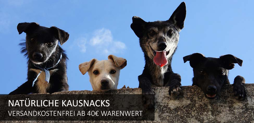 hunde kausnacks versandkostenfrei